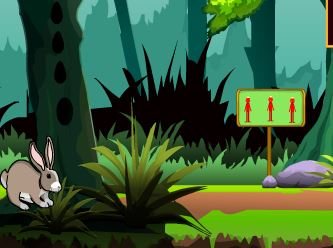 Games4Escape Forest Little Bunny Rescue Walkthrough