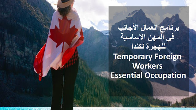 Temporary Foreign Workers in Essential Occupations