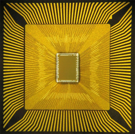 Truenorth microchip