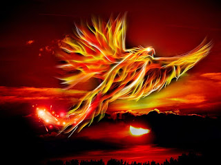 Is there a Real Phoenix Bird - What is the Story Behind Phoenix