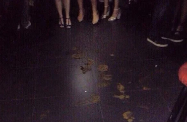 strippers poop on stage florida strip club