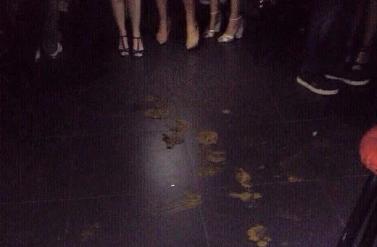 Have club chaos strip club will