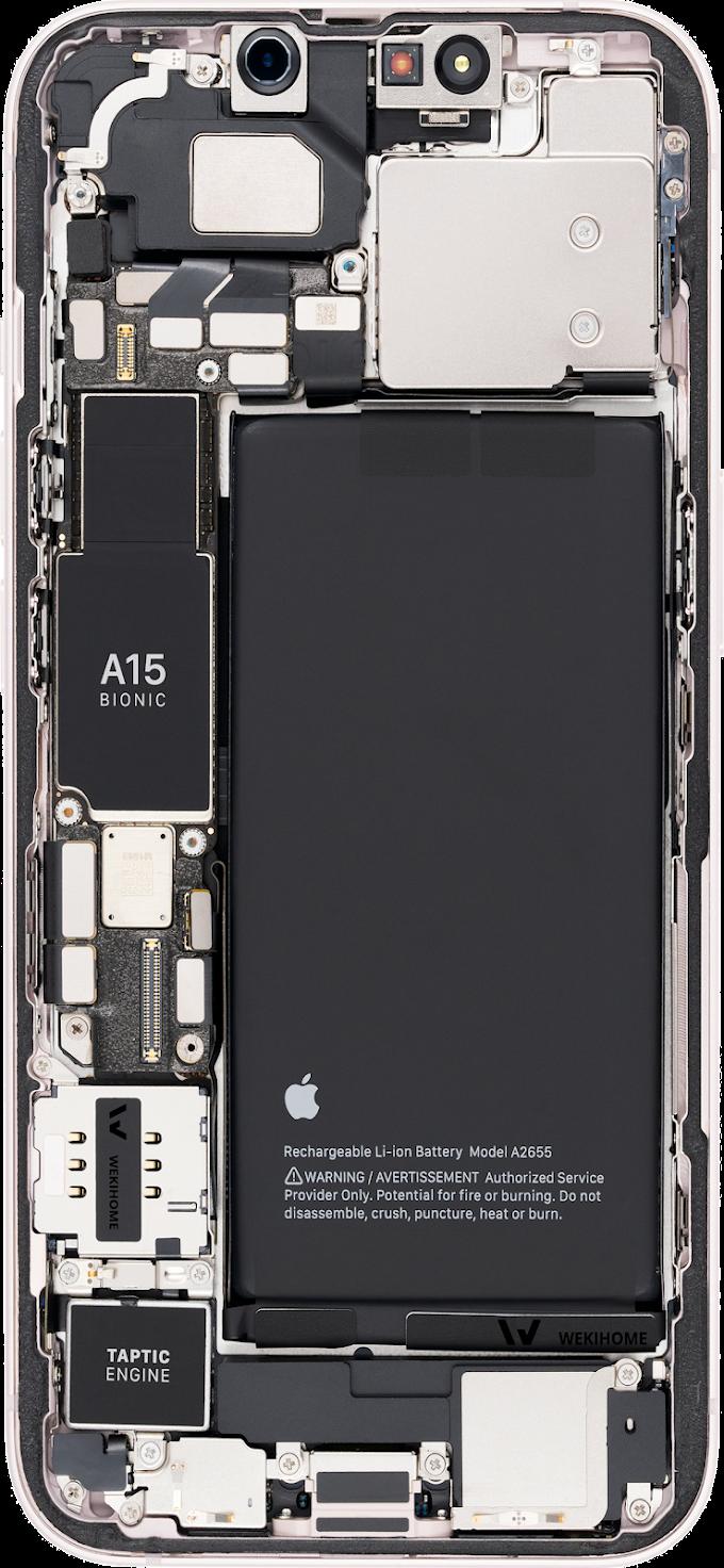 iPhone 13  13 Pro  13 Pro Max X-Ray   Internal Wallpaper