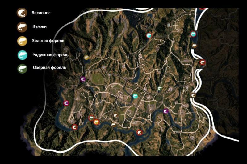 Карта рыбных мест