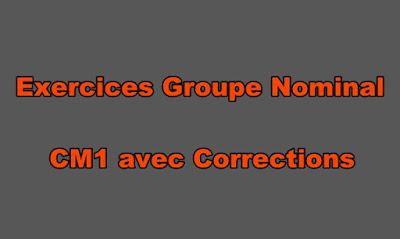 Exercice Groupe Nominal CM1 avec Correction PDF