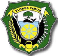 Informasi dan Berita Terbaru dari Kabupaten Flores Timur