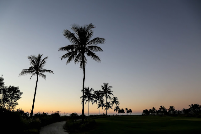 South Seas island Resort Captiva Island golf course and palm trees at sunset