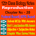 Reproduction 12 Class Biology Notes