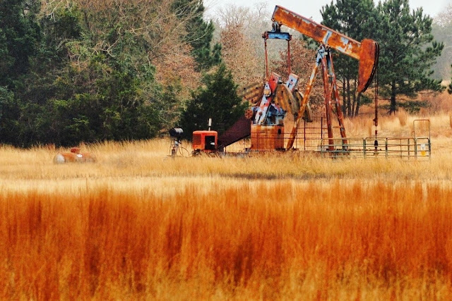 Austin to Houston Drive: Rusty pumpjack in a grassy field in Texas