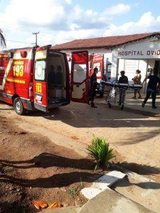 Ônibus com idosos é atacado por abelhas na Zona Rural de Serraria