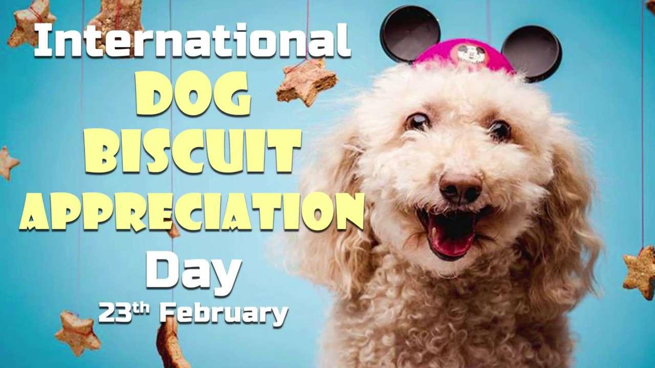 International Dog Biscuit Appreciation Day Wishes for Instagram