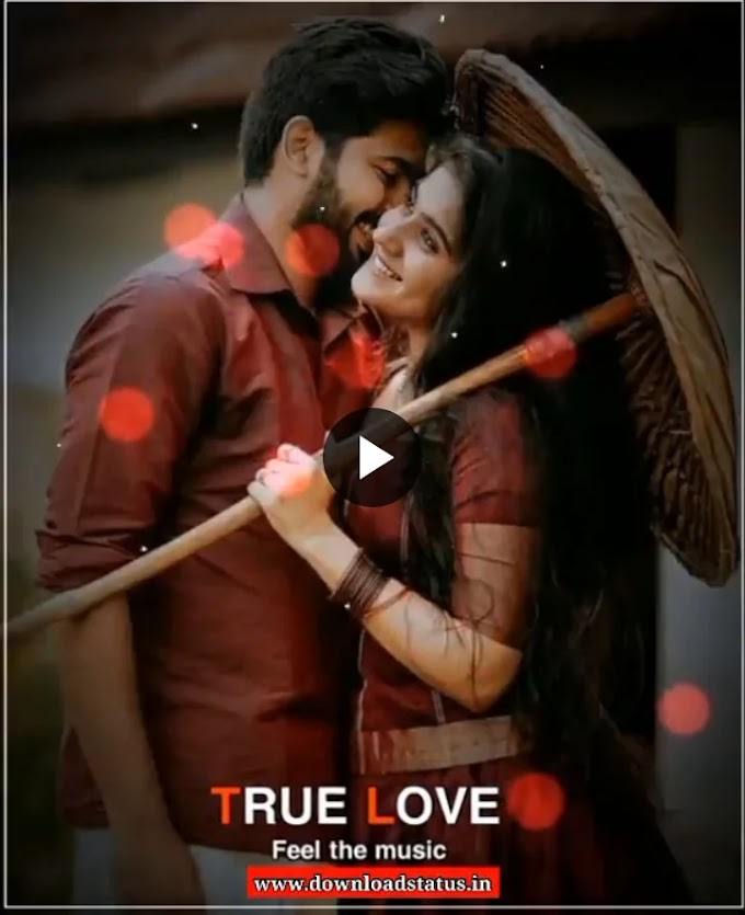 True Love Romantic Whatsapp Status Video Download - Love, Romantic Short Videos