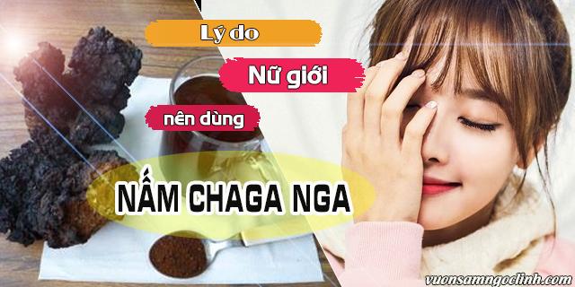 Lý do nữ giới nên dùng nấm Chaga Nga?