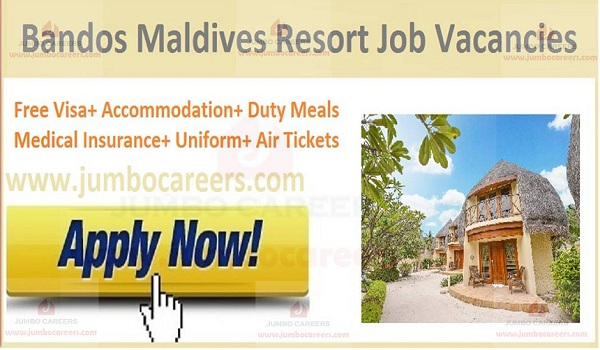 Available Resort jobs in Maldives, Recent jobs in Maldives,