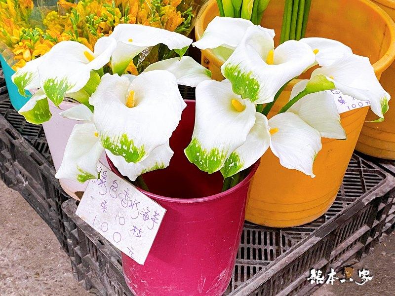 金鑫花卉-竹子湖農場