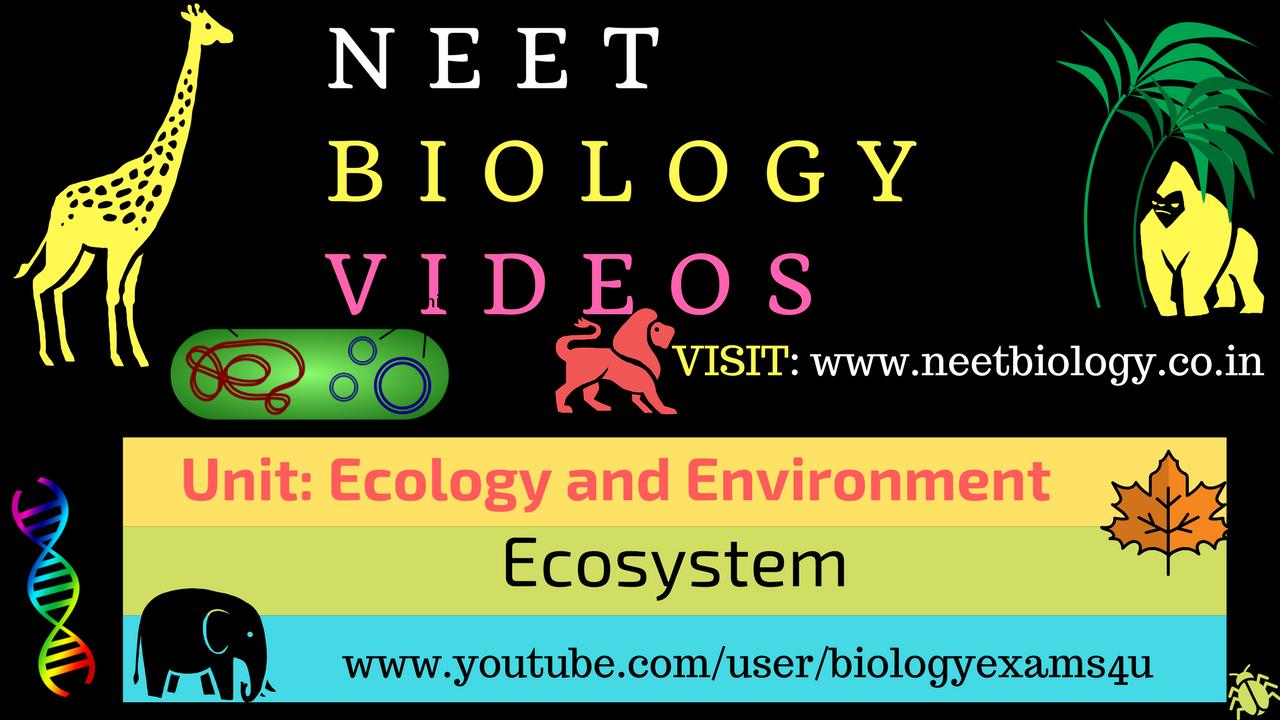 NEET Biology Video on Ecosystem ~ NEET Biology: Medical Entrance
