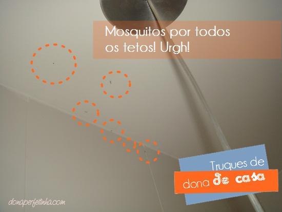 Mosquitos de luz em casa! Como eliminá-los do teto!