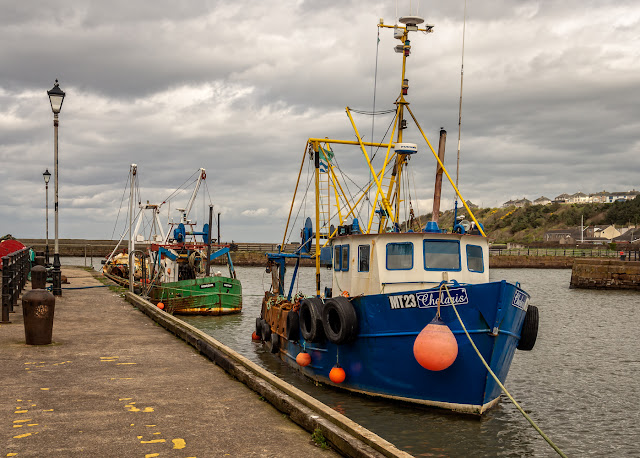 Photo of fishing boats in Maryport Harbour on Thursday afternoon
