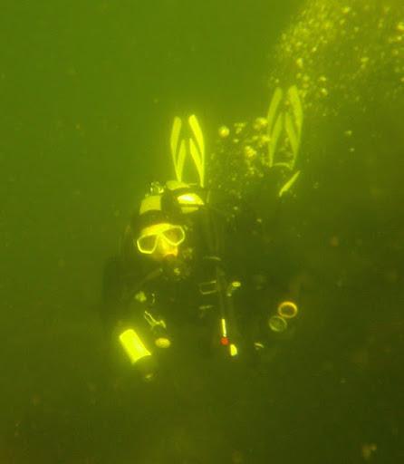 Nelson Scuba Diving