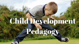 Complete Notes on Child Development-Pedagogy for CTET and TET Exam