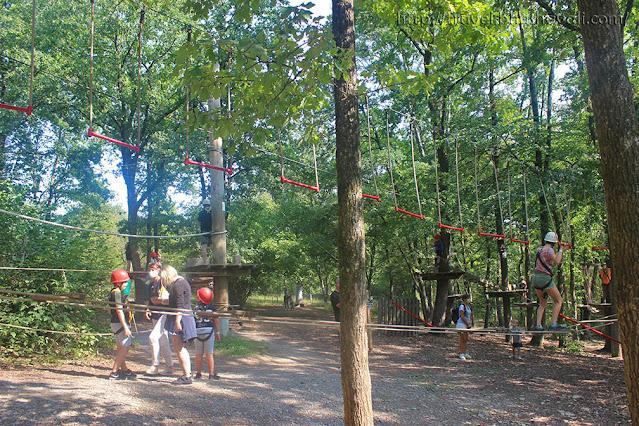 Adventure Valley Durbuy Tree top park adventures