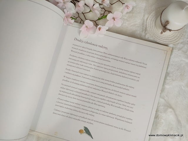 Drzewo rodowe naszej rodziny - Książka do opisywania rodowodu i historii rodzinnej
