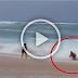 คลิปสุดระทึกเผยภาพนาทีชีวิตเด็กชายโดนคลื่นดูดลงทะเล ฮีโร่กระโดดเข้าคว้าตัว (ชมคลิป)