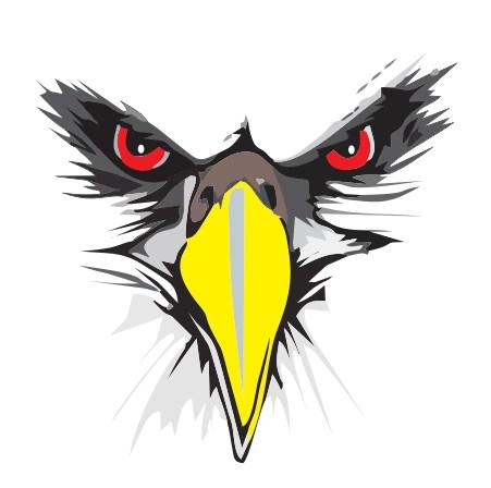 custom logo design head eagle