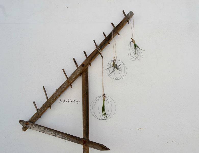 Hacemos un diy para plantas, utilizaremos alambre para hacer un mini jardín flotante para tillandsias o plantas aéreas