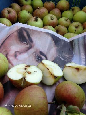 Hof van jaantje appels oogsten dahliashow en tuinbezoek - Krat met appel ...