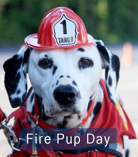 National Fire Pup Day Wishes For Facebook