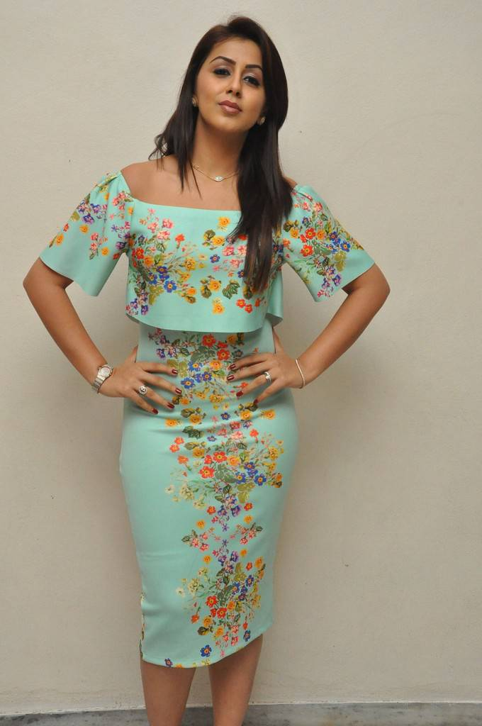 Nikki Galrani Stills At Telugu Movie Success Meet In Green Dress
