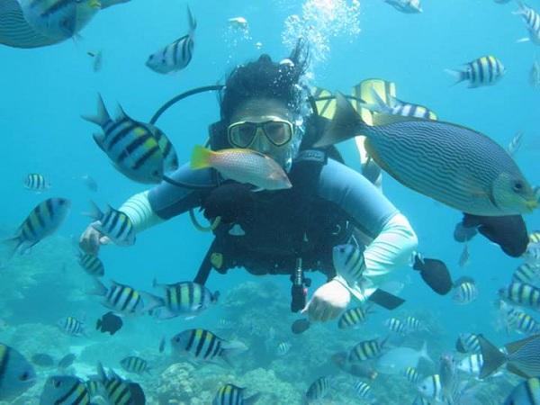 Lặn biển tại Coral Island
