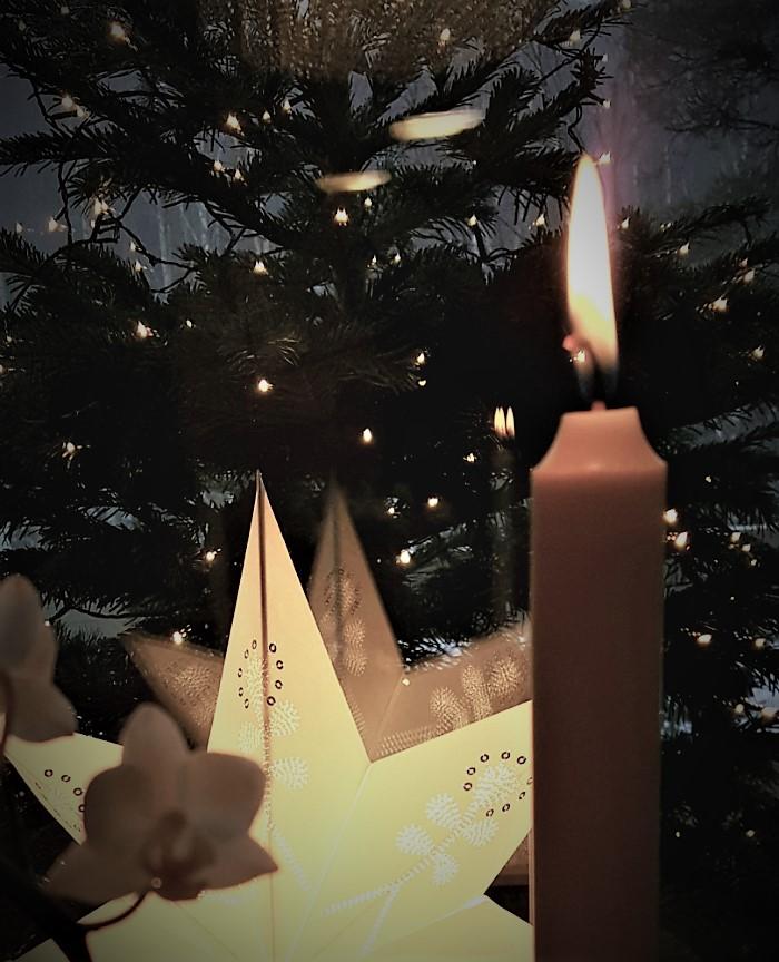 joulukynttilä ja joulukuusi