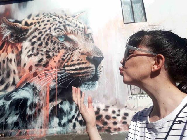 Cheetah street art by Sonny in Salt River, Cape Town
