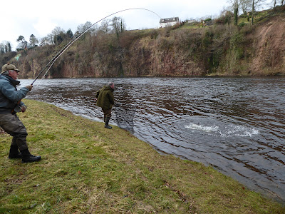 Salmon Fishing Scotland Prospects for Tay, Perthshire w/c 13th March 2017.
