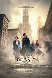 Download Film FANTASTIC BEAST AND WHERE TO FIND THEM BluRay 720p RETAIL Subtitle Indonesia
