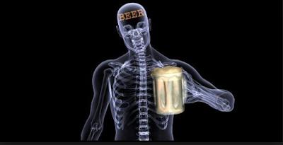 बियर पिने से हड्डिया होती है मजबूत - Latest Indians News