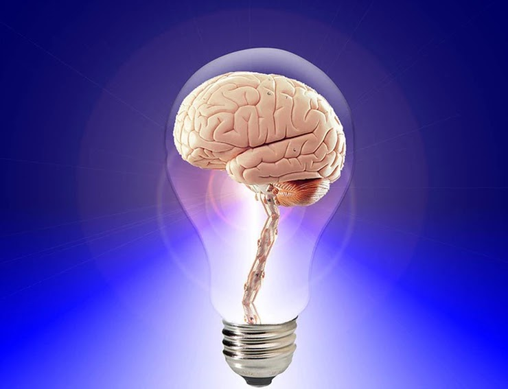 a gestão do conhecimento x o capital intelectual
