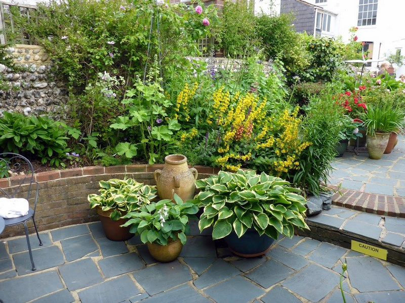 Back Gardens, Ambrose Place, Worthing. Open Gardens NGS Jardines traseros