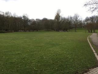 Eine große Wiese am Revierpark Vonderort