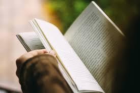 Langkah-langkah Membaca Ringkas