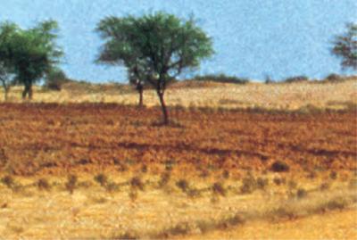 भूमि संसाधन