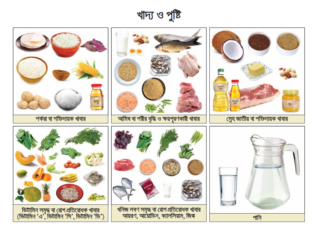 HSC Food and Nutrition Assignment Answer 2022 7th Week