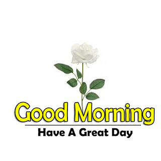 New Good Morning 4k Full HD Images Download For Daily%2B11