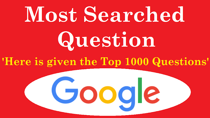 Most (10, 100, 500, 1000) Searched Question on Google
