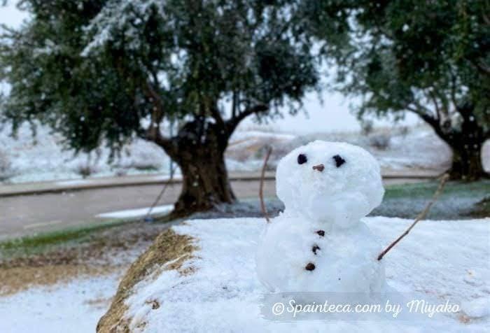 雪の積もるオリーブの木と雪だるま