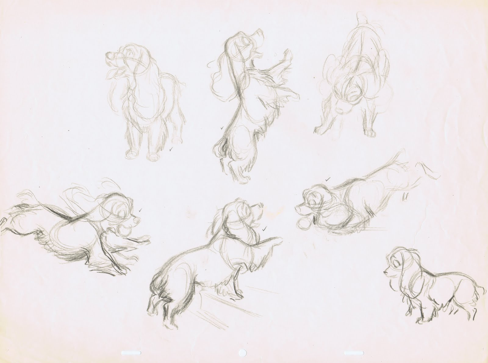 Living Lines Library Lady And The Tramp 1955 Character Design Model Sheets Production Drawings