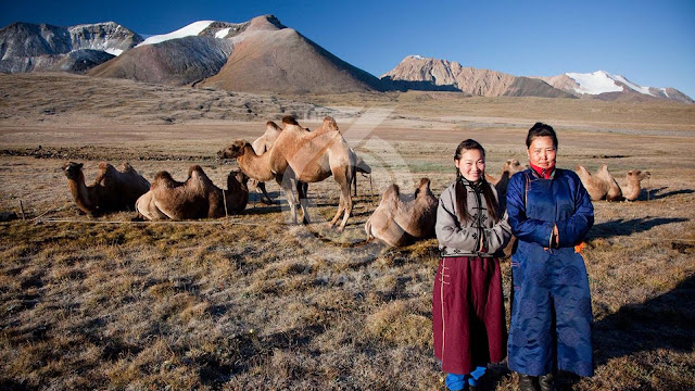 A summer in the land of nomads in Mongolia