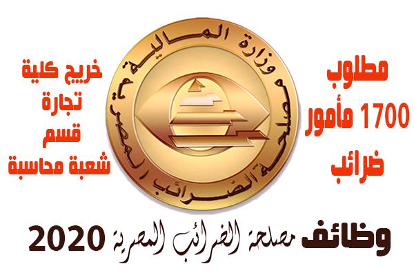 اعلان وظائف مصلحة الضرائب المصرية - تطلب 1700 مأمور ضرائب للحاصلين على بكالوريوس تجارة شعبة محاسبة